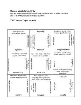 9 Square Vocabulary Activity - Human Organ Systems