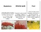 9 Vocabulary Blood Spatter for Forensics