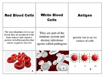 9 Vocabulary Intro to Blood in Forensics