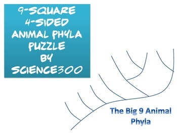 9-square 4-sided Animal Phyla puzzle
