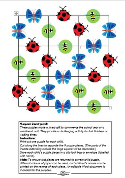 9 square insect puzzle