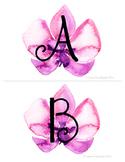 99 Cents Deal  Musical Alphabet Orchids