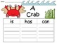 A+  17 Ocean Graphic Organizers... Compilation Package