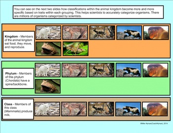 A 4th Grade SMARTBoard Introduction to Classifying Organisms