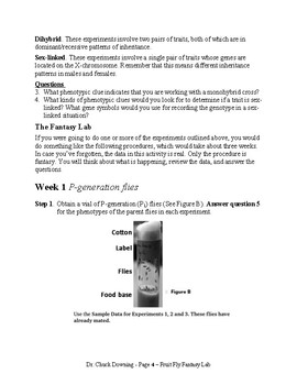 A 5-E Science Lab – Fruit Fly Fantasy Lab