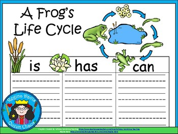 A+ A Frog's Life Cycle ...Three Graphic Organizers