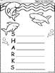A+ Acrostic Poem: SHARKS