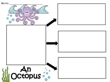 A+  An Octopus ... Three Graphic Organizers