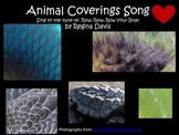 A+ Animal Coverings Song