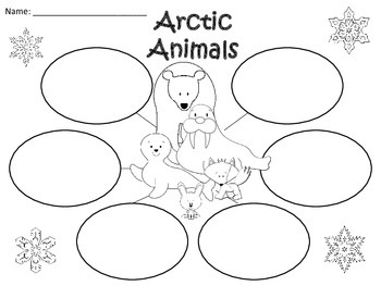 A+ Arctic Animals: Three Graphic Organizers