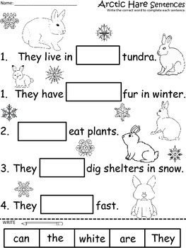 A+ Arctic Hare Sentences: Fill In The Blank