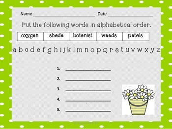 Kindergarten Plants Domain Alphabetical Order Packet