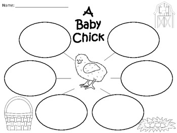 A+  Baby Chick... Three Graphic Organizers