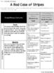 A Bad Case of Stripes - Visualize Comprehension Lesson Plan