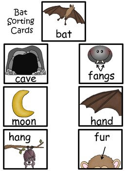 A+ Bats and Birds Sorting Activity