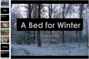 A Bed for the Winter Amazing Words PPT