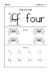 A Beginning Spider Counting Pack