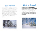 A Book about Snow- Snow Business