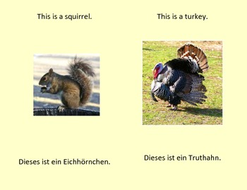 A Book of Animals - English & German phrasing