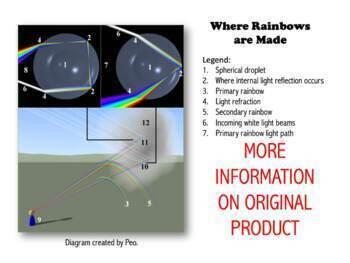A Brief History of Rainbow Mathematics & Physics Unit Study