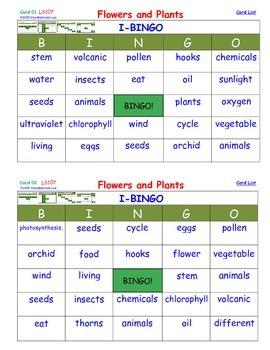 A Brilliant -  I-BINGO – Flowers and Plants - Interactive BINGO