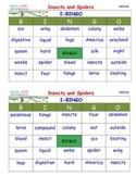 A Brilliant -  I-BINGO – Insects and Spiders - Interactive BINGO