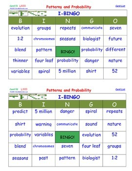 A Brilliant -  I-BINGO – Patterns and Probability - Intera
