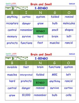 A Brilliant - I-BINGO – The Brain and Smell - LS005 Interactive BINGO