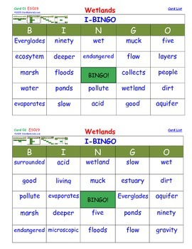 A Brilliant -  I-BINGO – Wetlands - Interactive BINGO