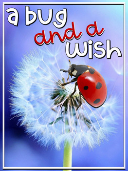 A Bug and a Wish Book Study (A Bullying Story) by Karen Scheuer