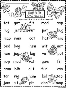 A+ Butterfly CVC Words And Letter Reading Practice