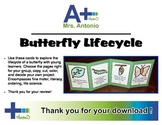 A+ Butterfly Lifecycle Cards - Make a book or other creation!