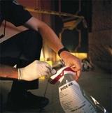 AP Biology....A Case in Forensics (DNA Fingerprint Lab) PowerPoint & Lab Handout