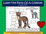 A+ Cheetah Labels