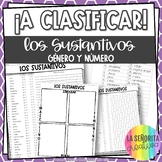 Gender and Number of Nouns Spanish Sorting Activity and Worksheets