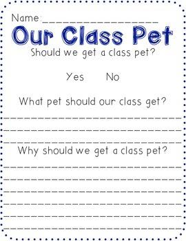 A Class Pet