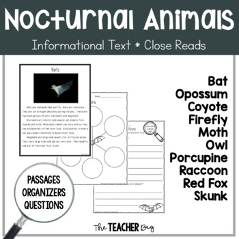 Close Read - Nocturnal Animals