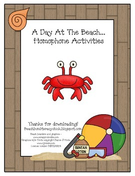 A Day At The Beach... Homophone Activites