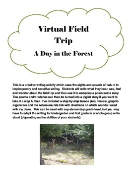 A Day in the Forest - Virtual Field Trip