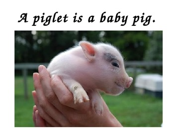 A+  Do You Know Your Farm Babies?