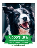 A Dog's Life: The Autobiography of  Stray Critical Thinkin