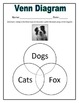 A Dog's Life Activity Pages