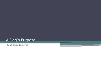 A Dog's Purpose PowerPoint Unit