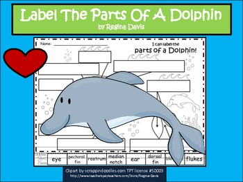 A+ Dolphin  Labels