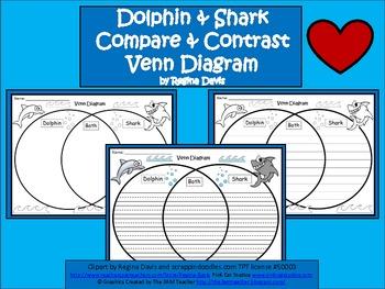 A+ Dolphin & Shark Venn Diagram...Compare and Contrast