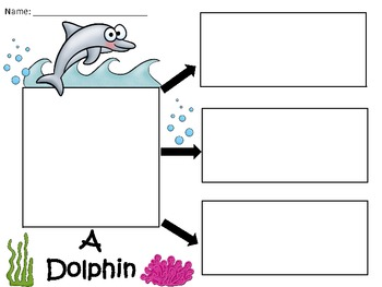 A+  Dolphin ... Three Graphic Organizers