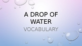 A Drop of Water Vocabulary (Thirsty Planet Unit in Louisia