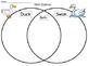 A+ Duck & Swan Venn Diagram...Compare and Contrast