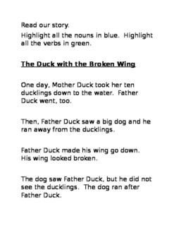 A Duck With a Broken Wing Story Activities