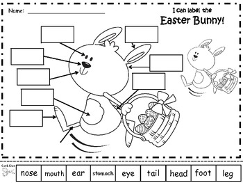 A+ Easter Bunny or Spring Bunny  Labels